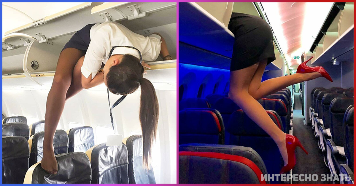 Секс стюардессы с пассажиром фото, мужик делает массаж девушке